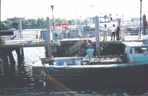 Sheepshead bay seaport for Sheepshead bay fishing boats