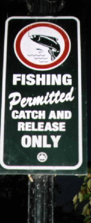 Basic info on fishing in nyc parks for Nysdec fishing license